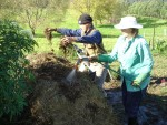 making compost in vegetable garden
